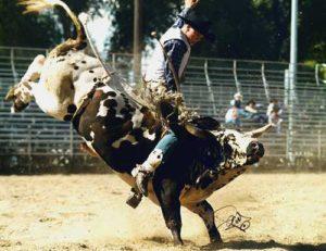 m_rodeo2