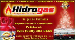 HidroGas_2015
