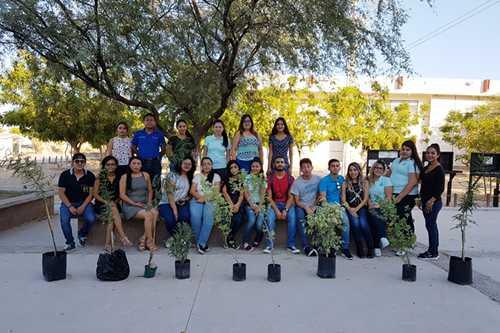 Alumnos del ITSPP de la Carrera Licenciatura en Administración realizan actividad de reforestación