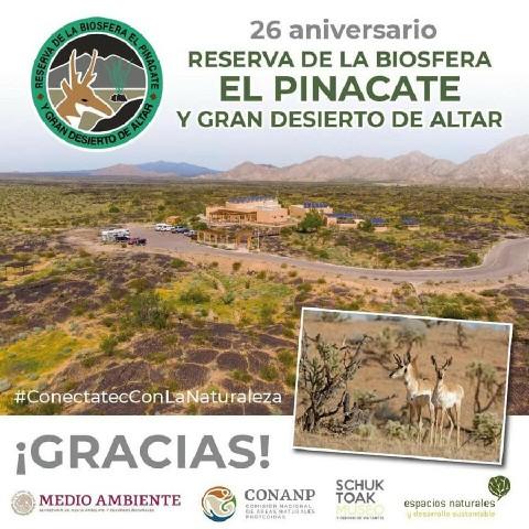 Celebremos los 26 años de la Reserva de la Biósfera El Pinacate y Gran Desierto de Altar.